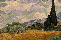 Vincent van Gogh. Cypresses. Metropolitan Museum of Art, New York.